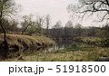 Forest river in the spring 51918500