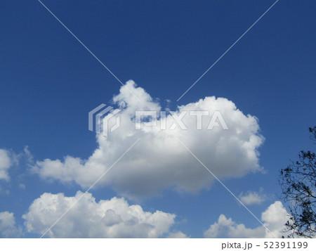 4月の青い空と白い雲 52391199