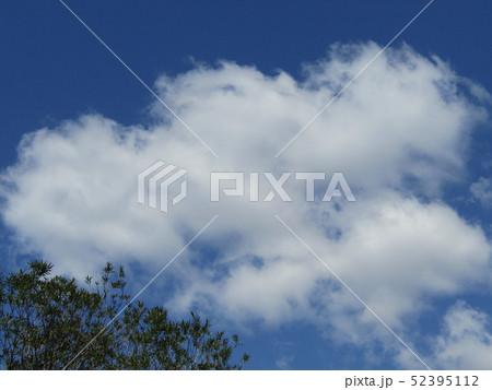 4月の青い空と白い雲 52395112