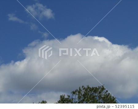 4月の青い空と白い雲 52395115