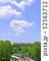杜の都 仙台 西公園より新緑を愛でる 52563712
