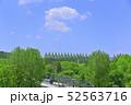 杜の都 仙台 西公園より新緑を愛でる 52563716