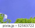 杜の都 仙台 西公園より新緑を愛でる 52563722