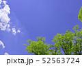 杜の都 仙台 西公園より新緑を愛でる 52563724