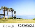 三戸浜海岸(初夏) 52595028