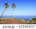 三戸浜海岸(初夏) 52595037