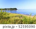 三戸浜海岸(初夏) 52595090