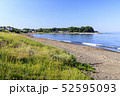 三戸浜海岸(初夏) 52595093