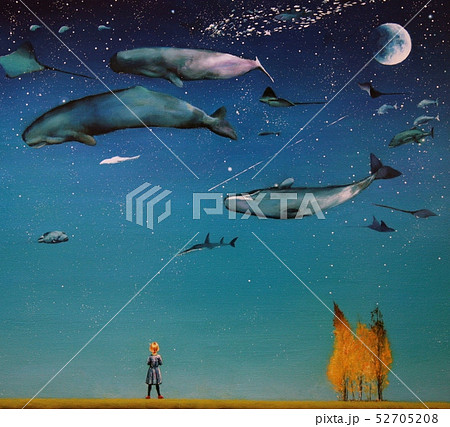 夜空のアクアリウム 52705208