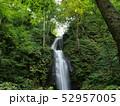 滝 奥入瀬渓流 流れの写真 52957005