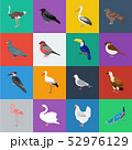 Types of birds cartoon icons in set collection for design. Home and wild bird vector symbol stock 52976129