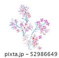 花 フラワー お花 52986649