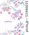 花 フラワー お花 52986655