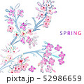 花 フラワー お花 52986659