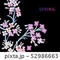 花 フラワー お花 52986663