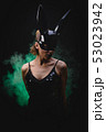 Sexy girl in a black bunny mask 53023942