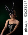 Sexy girl in a black bunny mask 53023947