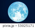 Hay moon planet back silhouette birds on power 53025171