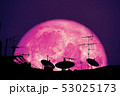 full Strawberry moon planet back silhouette 53025173