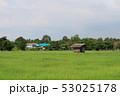 The cottage is surrounded by green rice fields and 53025178