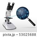 バイオテクノロジー ズーム ミクロのイラスト 53025688