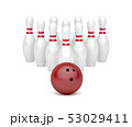 Bowling ball and ten pins 53029411