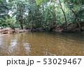 オーストラリアの公園 53029467