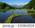 北アルプスと水田(青鬼集落) 53064929