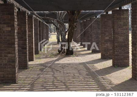 小金井公園 53112367
