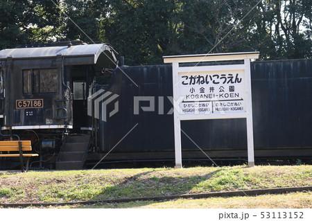 小金井公園 53113152