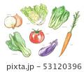 野菜 食材 白バックのイラスト 53120396