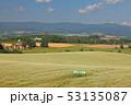 農園 牧草地 放牧の写真 53135087