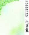 グリーン 背景 木漏れ日 53135594