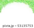 木漏れ日 背景 53135753