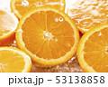 オレンジ 柑橘類 オレンジ色の写真 53138858