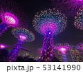 シンガポール 夜景8 53141990