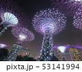 シンガポール 夜景5 53141994