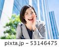 ビジネスウーマン 女の人 ビジネスマンの写真 53146475