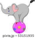 Cartoon circus elephant standing on a ball 53151935