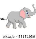 Cartoon elephant isolated on white background 53151939