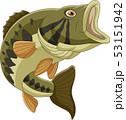 Cartoon bass fish isolated on white background 53151942