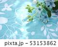 ブルースターの花束 53153862