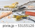 バードカービング。野鳥の木彫刻、野鳥彫刻。彩色済はウグイスです。※素人の製作途中の作品です。 53155120