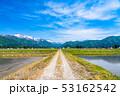 《新潟県》南魚沼の田園風景・一本道 53162542