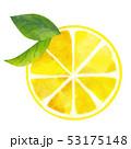 レモン フルーツ 輪切りのイラスト 53175148