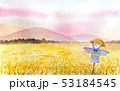 田舎 田んぼ 風景のイラスト 53184545