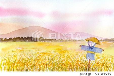 案山子のある田園風景 水彩画 53184545