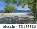 大久野島 うさぎ島 風景の写真 53186588