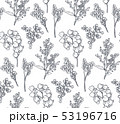 Seamless pattern with hand drawn flowers and plants 53196716