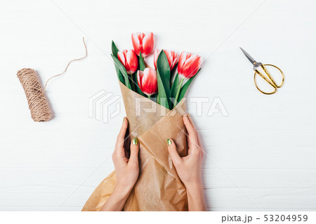 Female's hands wrapping bunch of red tulips in 53204959
